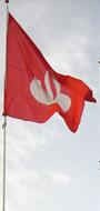 banderas publicitarias 2